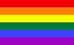 Bandera Gay 3.50€ #500840003