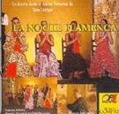 Solo Compás - La noche flamenca