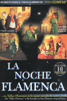 La noche flamenca - Dvd