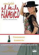 Manuel Salado: El baile flamenco nivel avanzado. Fandangos y Garrotín. Vol. 11
