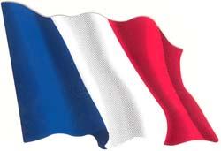 Autocollant du drapeau français