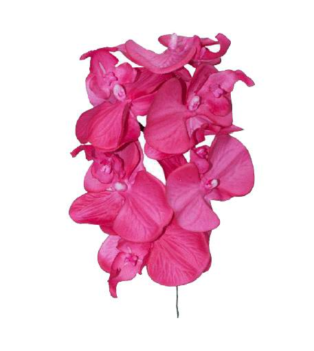 Artificial Flamenco Orchids. 16cm
