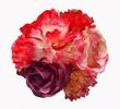 Flamenca Bouquet of Flowers in Red and Purple